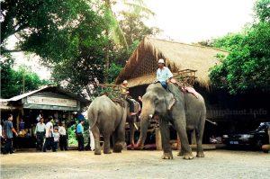 Xe đưa đón sân bay Buôn Ma Thuột Cư Kuin