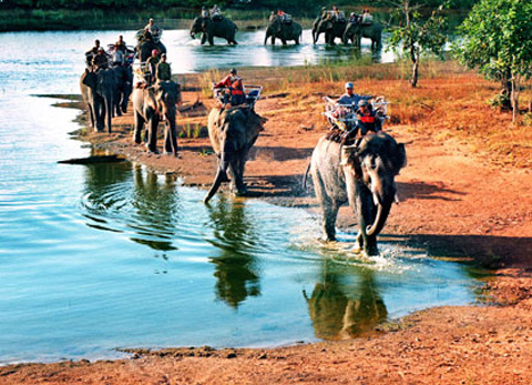 Xe đưa đón sân bay Buôn Ma Thuột Lắk